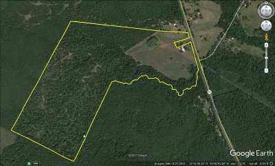 Milam Residential Lots & Land For Sale: 14073 Hwy 87 N