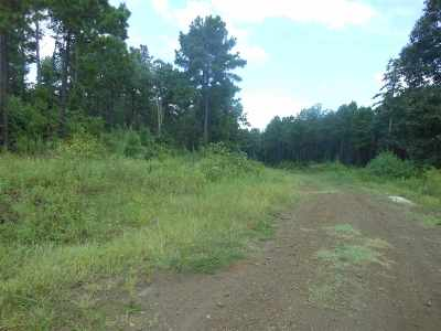Residential Lots & Land For Sale: 306 Mount Sinai