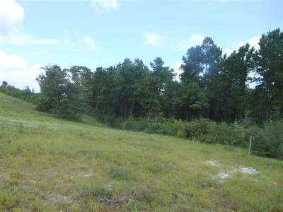 Residential Lots & Land For Sale: 688 Mount Sinai RD