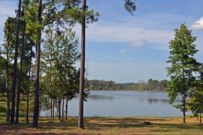 Huntington, Zavalla, Brookeland, Etoile, Broaddus, Bronson Residential Lots & Land For Sale: 27-28-83 Shoreline Drive #Lots 27-