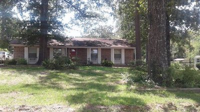 Center Single Family Home For Sale: 487 Fm 2026