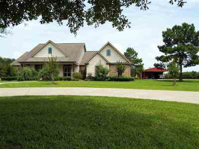 Buna Single Family Home For Sale: 29609 Hwy 96
