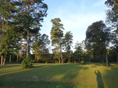 Pineland Residential Lots & Land For Sale: 6 Bear Creek Dr