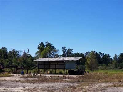 Angelina County, Jasper County, Nacogdoches County, Newton County, Sabine County, San Augustine County, Shelby County Commercial For Sale: 10599 Fm 363