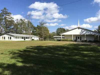 Newton Single Family Home For Sale: 192 County Road 4045 #Lewis Ch