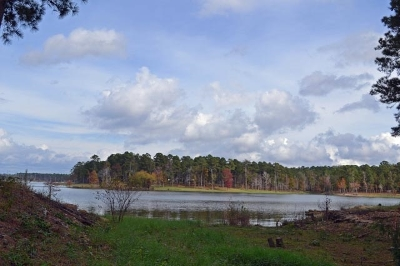 Huntington, Zavalla, Brookeland, Etoile, Broaddus, Bronson Residential Lots & Land For Sale: 38 & 39 Lakeway Dr. #17 North