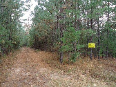 Burkeville Residential Lots & Land For Sale: Village Dr #Lot 17 V