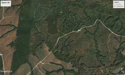Angelina County, Jasper County, Nacogdoches County, Newton County, Sabine County, San Augustine County, Shelby County Residential Lots & Land For Sale: Cr 1033