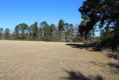 Pineland Residential Lots & Land For Sale: 688 Delta Hts
