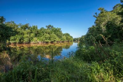Angelina County, Jasper County, Nacogdoches County, Newton County, Sabine County, San Augustine County, Shelby County Residential Lots & Land For Sale: County Road 020