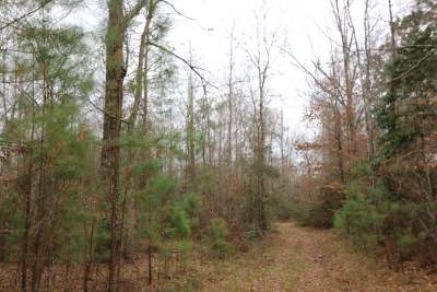 Angelina County, Jasper County, Nacogdoches County, Newton County, Sabine County, San Augustine County, Shelby County Residential Lots & Land For Sale: Cr 1059
