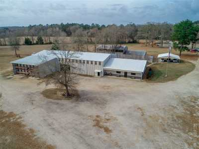 Jasper Commercial For Sale: 2197 W Texas State Hwy 63