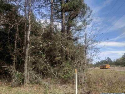 Kirbyville Residential Lots & Land Accepting Backups: Fm 363 #CR 3061
