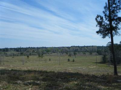 Angelina County, Jasper County, Nacogdoches County, Newton County, Sabine County, San Augustine County, Shelby County Residential Lots & Land For Sale: 3030 Cr 2052