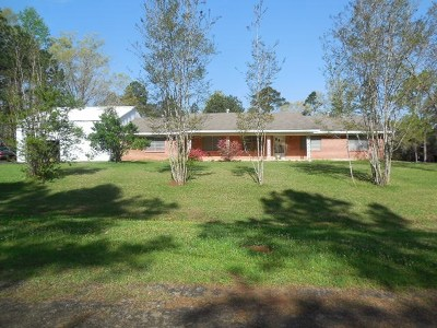 Hemphill Single Family Home For Sale: 180 Kirby Street