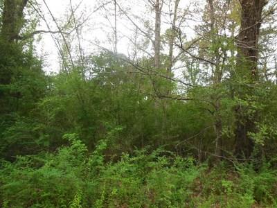 Bon Weir, Bon Wier, Burkeville, Wiergate, Hemphill, Milam, Shelbyvile, Shelbyville Residential Lots & Land For Sale: 138 Cole Dr