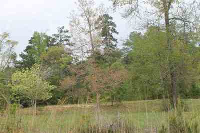 Huntington, Zavalla, Brookeland, Etoile, Broaddus, Bronson Residential Lots & Land For Sale: 534 Angelina #Section