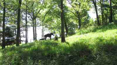 Bon Weir, Bon Wier, Burkeville, Wiergate, Hemphill, Milam, Shelbyvile, Shelbyville Residential Lots & Land For Sale: Cr 2781