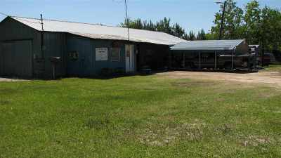 Angelina County, Jasper County, Nacogdoches County, Newton County, Sabine County, San Augustine County, Shelby County Commercial For Sale: 22749 S Highway 96