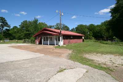 Broaddus Single Family Home For Sale: 603 Hwy 147s