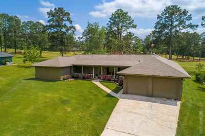 Brookeland Single Family Home For Sale: 607 Masters Blvd