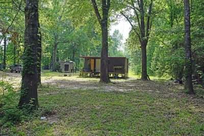 Jasper Single Family Home For Sale: 2425 Cr 020