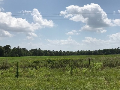 Kirbyville Residential Lots & Land For Sale: S Hwy 96