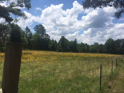 Broaddus Residential Lots & Land For Sale: 12.24 Acres Cr 4240