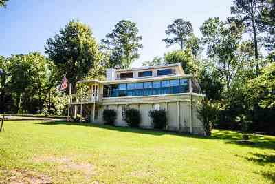 Broaddus Single Family Home For Sale: 161 Cr 3464