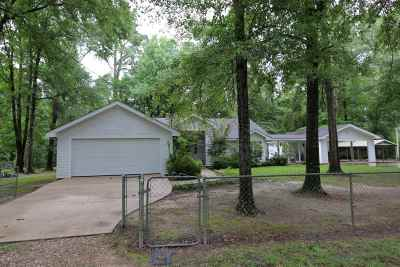 Jasper County Single Family Home For Sale: 226 County Road 196