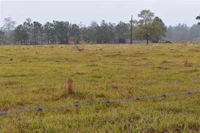 Buna Residential Lots & Land For Sale: 1028 Cr 721