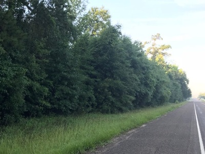 Residential Lots & Land For Sale: Hwy 63 East