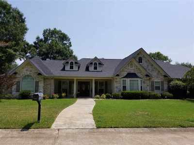Jasper County Single Family Home For Sale: 687 Lake Drive