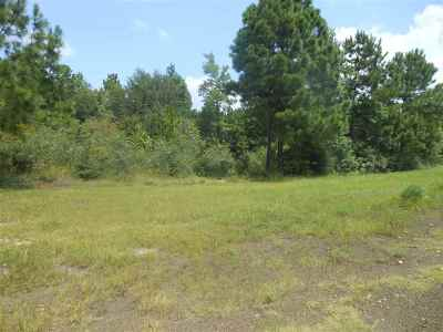 Residential Lots & Land Acreage near Toledo Bend: 306 Mt. Sinai Road #Fairmoun