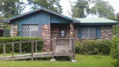 Newton Single Family Home For Sale: 318 Carver St.