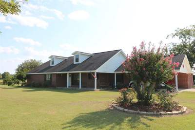 Jasper County Single Family Home For Sale: 2778 Co. Rd. 701