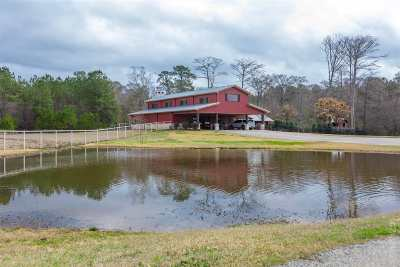 Angelina County, Jasper County, Nacogdoches County, Newton County, Sabine County, San Augustine County, Shelby County Farm & Ranch For Sale: 2197 W Texas State Hwy 63