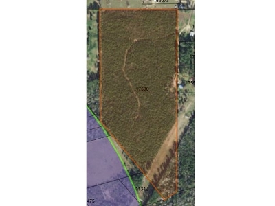 Residential Lots & Land Sold: Cr 2020