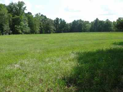 Bronson Residential Lots & Land For Sale: Randolph Dr.