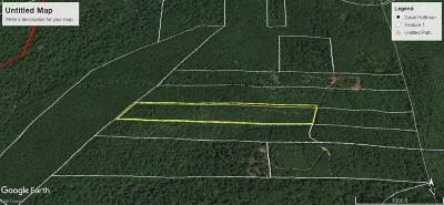 Residential Lots & Land For Sale: 290 Daisy Ln