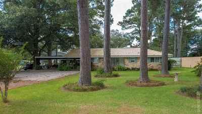 Jasper Single Family Home For Sale: 211 County Road 165