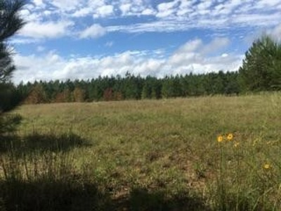 Kirbyville Residential Lots & Land For Sale: County Road 454 #Roganvil