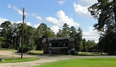Hemphill Commercial For Sale: 460 Sabine St
