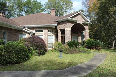 Hemphill Single Family Home For Sale: 975 Pleasure Bend Rd.