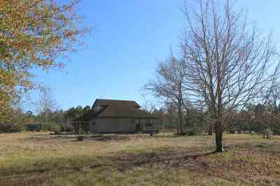 Newton Single Family Home For Sale: 4808 Highway 87 N