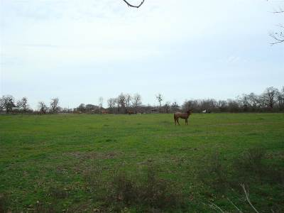 Marlin Residential Lots & Land For Sale: 7 County Road #1