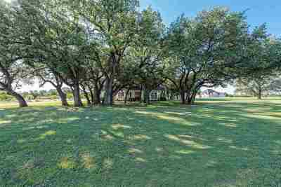 China Spring Single Family Home For Sale: 1540 Austin Hines