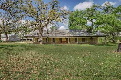 Lorena Single Family Home For Sale: 203 George Brooks Drive