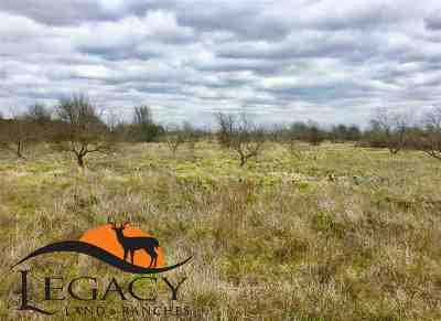 Gatesville Farm & Ranch For Sale: Hwy 36