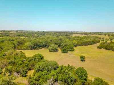 Gatesville Farm & Ranch For Sale: 445 Cr 133